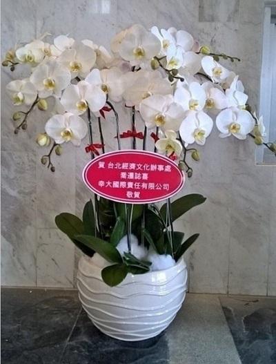 hoa bến tre