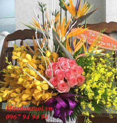 hoa đẹp đà lạt