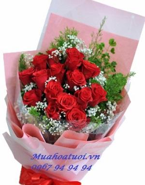 hoa hải phòng