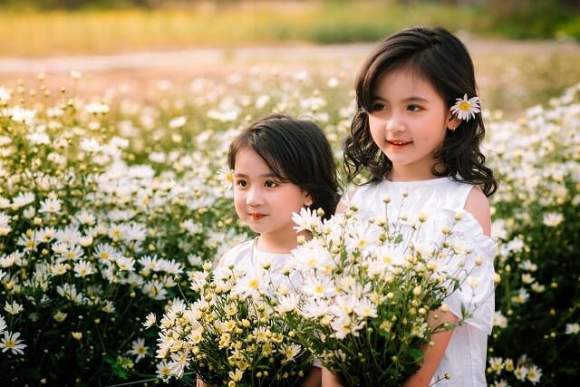 em bé bên vườn hoa cúc họa mi