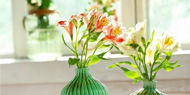 lọ hoa thủy tiên